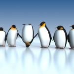 Fun penguins